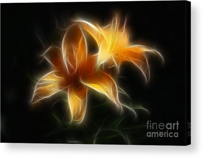 Lilies Acrylic Print featuring the digital art Wispy Lilies by Teresa Zieba