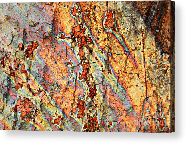 Rust Acrylic Print featuring the photograph Wood And Rust by Carol Groenen
