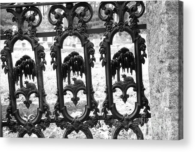 Gate Acrylic Print featuring the photograph Wrought Iron Gate -west Epping Nh Usa by Erin Paul Donovan