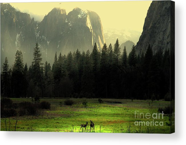 Landscape Acrylic Print featuring the photograph Yosemite Village Golden by Wingsdomain Art and Photography