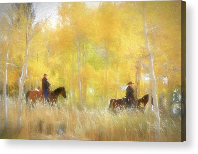 Fishlake National Forest Acrylic Print featuring the photograph Autumn Ride by Donna Kennedy