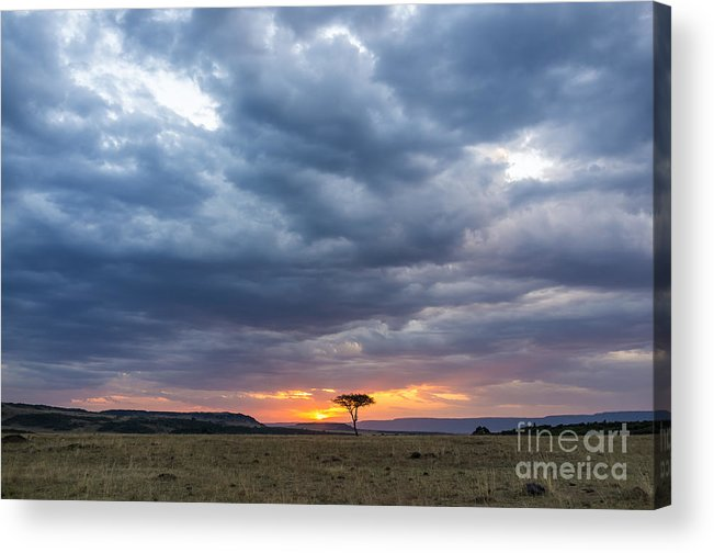 Game Acrylic Print featuring the photograph Beautiful Sunset In The Savannah Of by Lmspencer