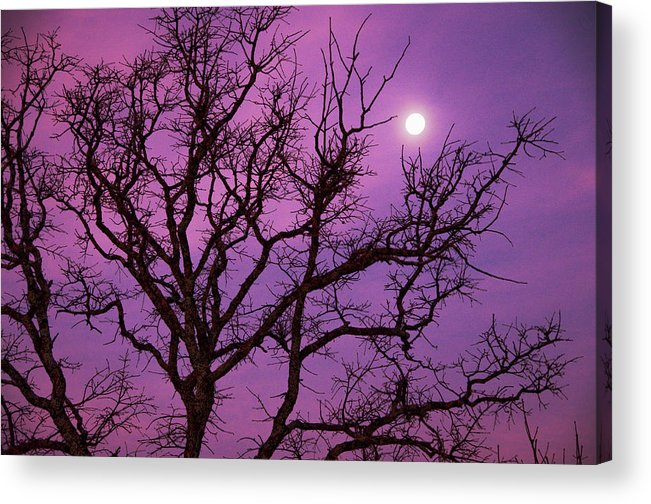 Scenics Acrylic Print featuring the photograph Christmas Morning Moon by Jeff R Clow
