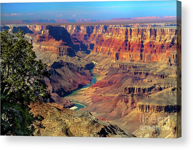 Grand Canyon Acrylic Print featuring the photograph Grand Canyon Sunset by Robert Bales
