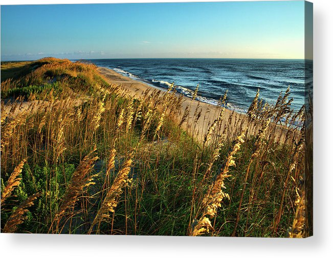 North Carolina Acrylic Print featuring the photograph Outer Banks View by Dan Carmichael
