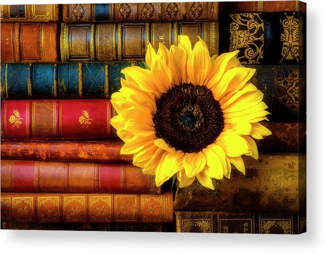 Book Acrylic Print featuring the photograph Sunflower In Stack Of Books by Garry Gay