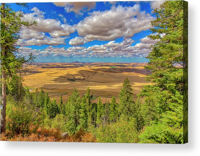 Agriculture Acrylic Print featuring the photograph Usa, Colorado, Colfax by Jaynes Gallery
