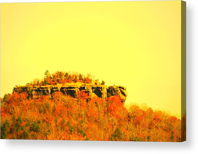 Landscape Acrylic Print featuring the photograph Colors Of Fall by Lisa Johnston