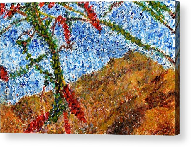 Watercolor Acrylic Print featuring the painting Ocotillo In Bloom by Cynthia Ann Swan