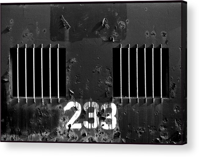 Photo Decor Acrylic Print featuring the photograph 233 by Steven Huszar