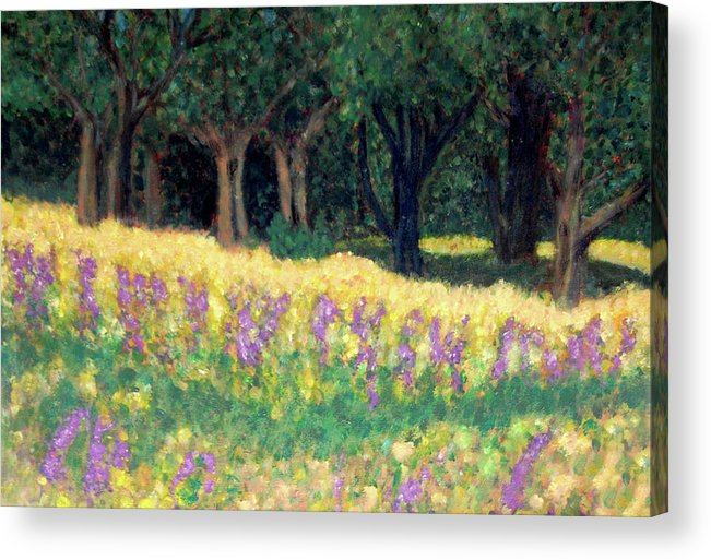 Texas Acrylic Print featuring the painting Texas Gold by Carolyn Donnell