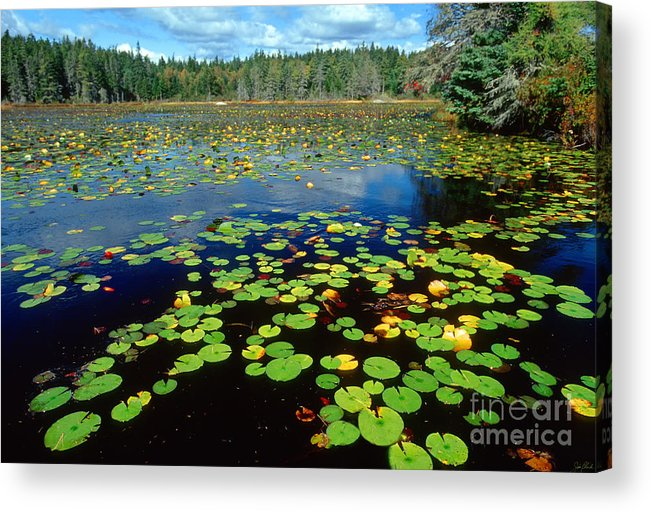 Ames Pond Acrylic Print featuring the photograph Ames Pond by Jim Block