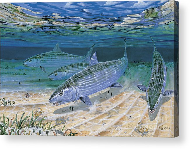 Bonefish Acrylic Print featuring the painting Bonefish Flats In002 by Carey Chen