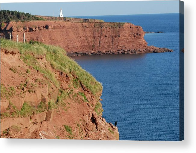 Landscape Acrylic Print featuring the photograph Cape Tryon Lighthouse by Frank Falzett