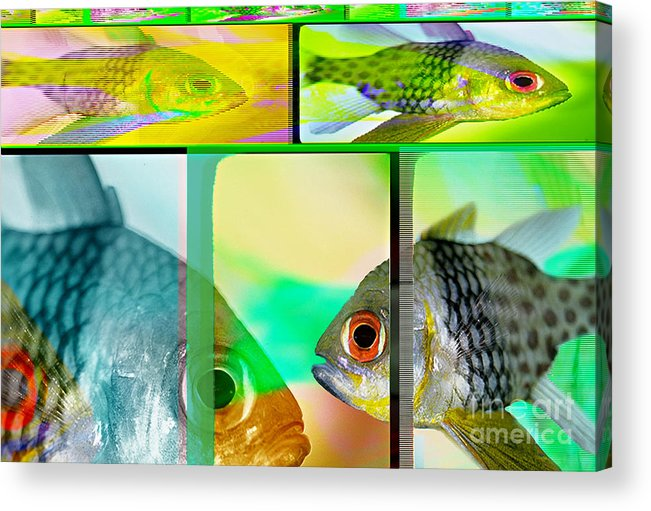 Fish Abstract Acrylic Print featuring the digital art Cardinalfish Abstract by Wernher Krutein