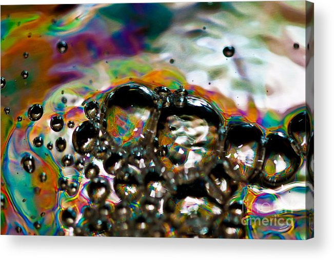 Abstract Acrylic Print featuring the photograph Caterpillar by Anthony Sacco