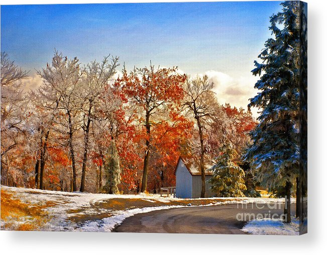 Landscape Acrylic Print featuring the photograph Change Of Seasons by Lois Bryan