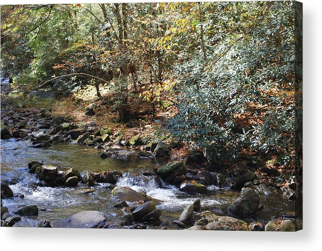 Creek Acrylic Print featuring the photograph Creek 12 by Michael Rushing