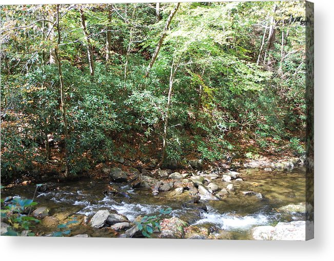 Cades Cove Acrylic Print featuring the photograph Creek 13 by Michael Rushing