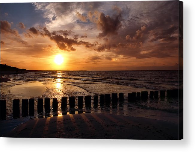 Ostsee Acrylic Print featuring the pyrography Darss by Steffen Gierok
