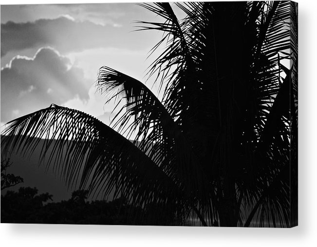 Black And White Acrylic Print featuring the photograph Fifty by Donna Shahan