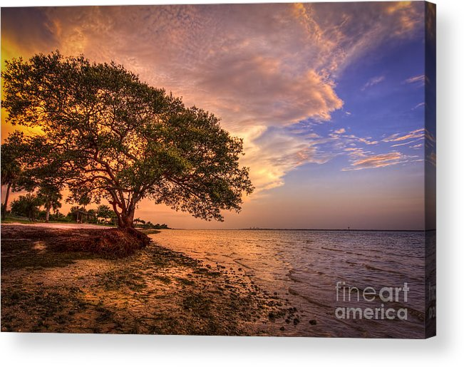 Picnic Island Park Acrylic Print featuring the photograph Gentle Whisper by Marvin Spates