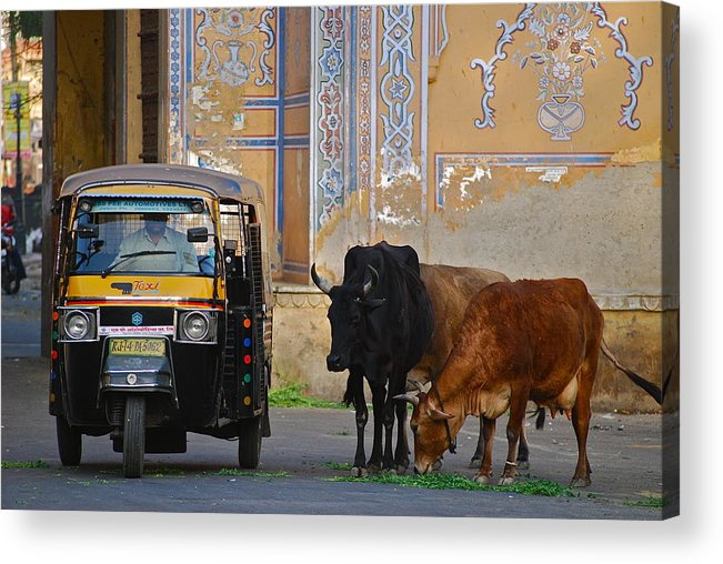 Asia Acrylic Print featuring the photograph Jaipur by Louise Morgan