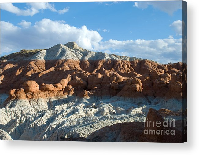 Mountain Acrylic Print featuring the photograph Naked Mountain by Kate Sumners