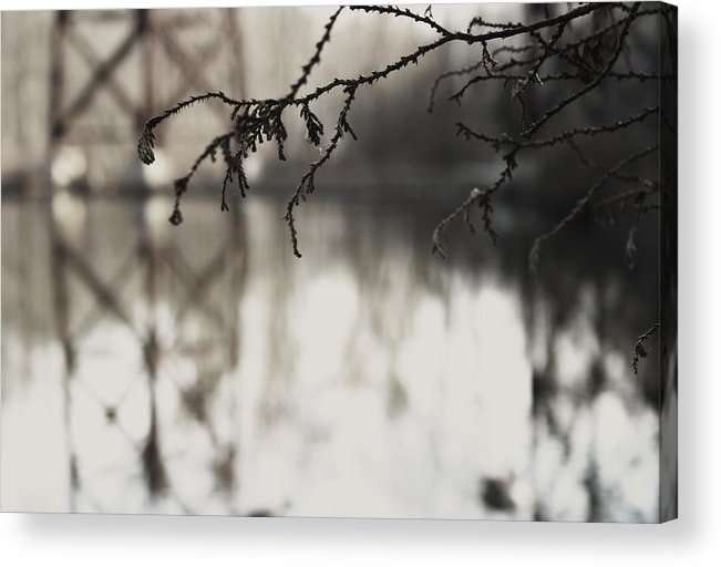 Pond Acrylic Print featuring the photograph Pond And Trestle by Robin Mahboeb