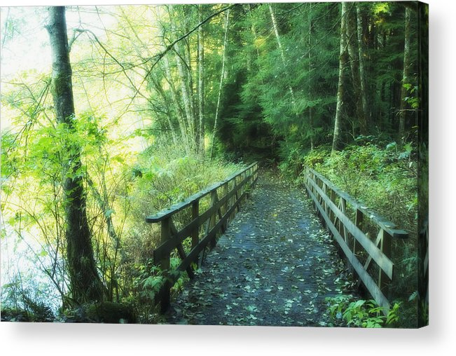 Bridge Acrylic Print featuring the photograph Rice Lake In North Vancouver by Marlene Ford