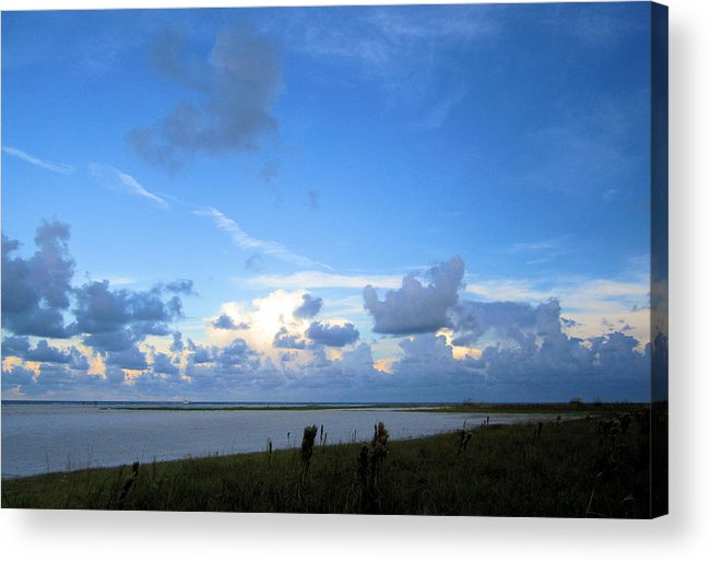 Acrylic Print featuring the photograph Sb20 by Pepsi Freund