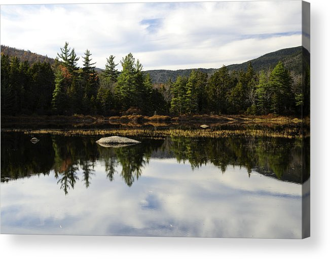 Autumn Acrylic Print featuring the photograph Scenic Lily Pond by Luke Moore