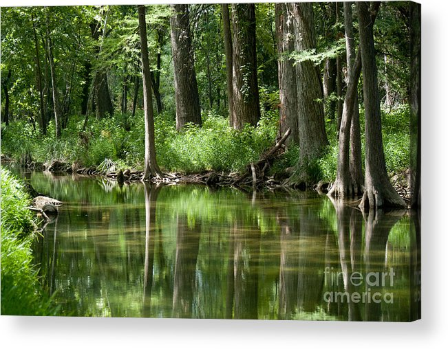 Landscape Acrylic Print featuring the photograph Serenity by Barbara Shallue