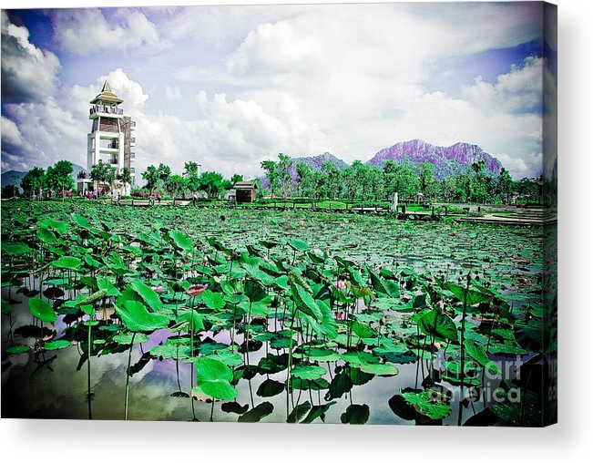Horizontal Acrylic Print featuring the photograph The Great Lotus Flower Pond by Jeng Suntorn niamwhan