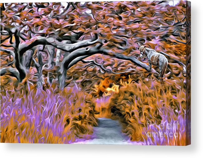Trees Acrylic Print featuring the photograph V.i. 0139 by Charles Cunningham
