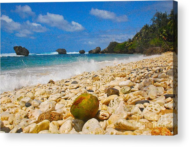 Barbados Acrylic Print featuring the photograph View From The Coconut by Blake Yeager