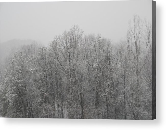 Acrylic Print featuring the photograph Winter by Eric Armstrong