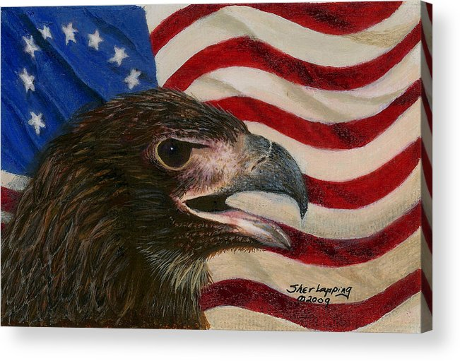 Eagle Acrylic Print featuring the painting Young Americans by Sherryl Lapping