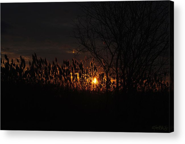 Acrylic Print featuring the photograph 03 Sunset by Michael Frank Jr