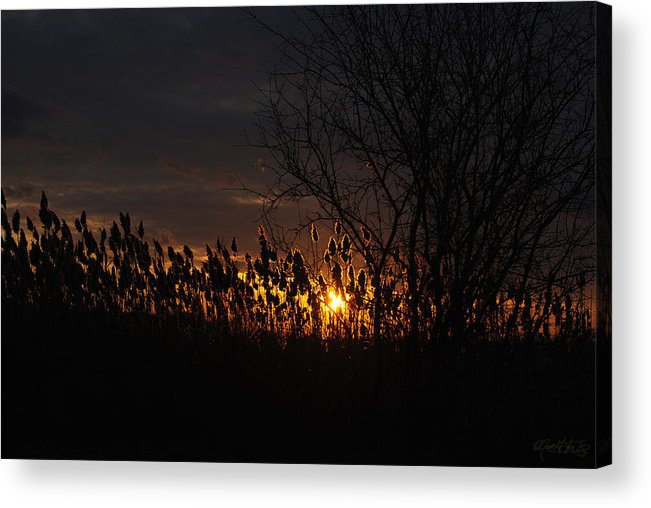Acrylic Print featuring the photograph 04 Sunset by Michael Frank Jr