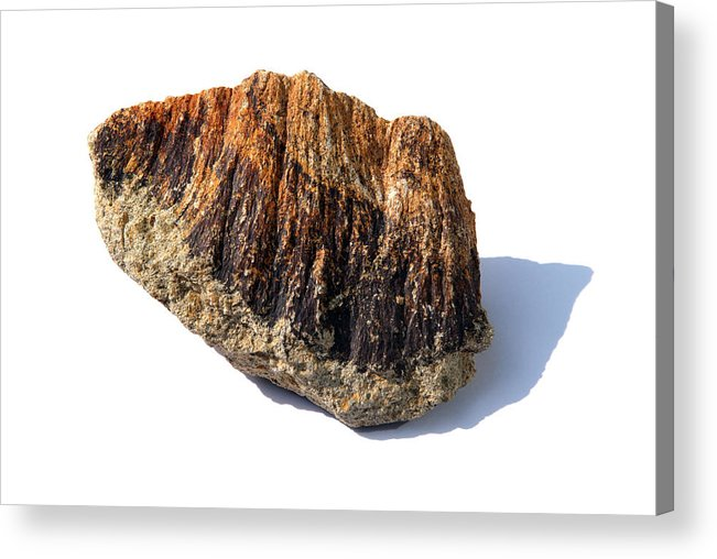 Shatter Cone Acrylic Print featuring the photograph Rock From Meteorite Impact Crater by Detlev Van Ravenswaay