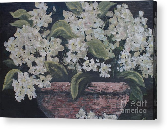 Potted Hydrangrae In The Moonlight By Terri B. Webb Acrylic Print featuring the painting A Glimps Of Light by Terri B Webb