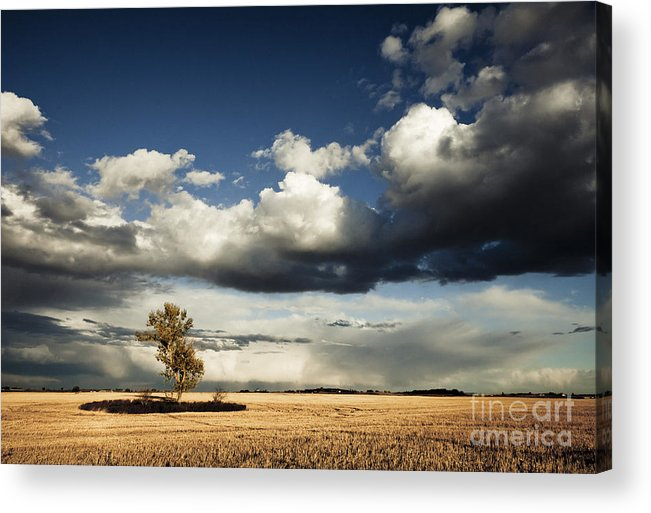 Canada Acrylic Print featuring the photograph Coming Storm by RicharD Murphy