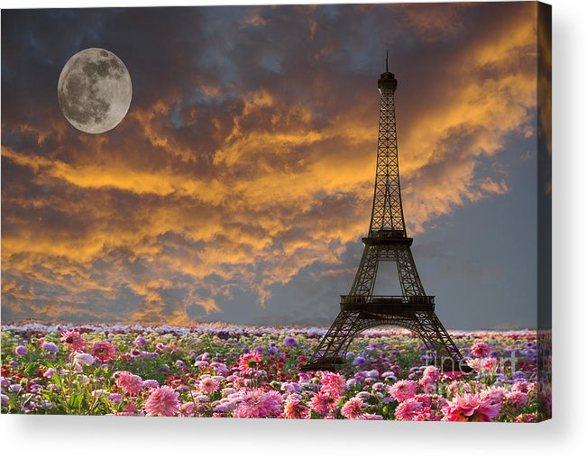 Paris Acrylic Print featuring the photograph Dreaming Of Paris by Jim And Emily Bush