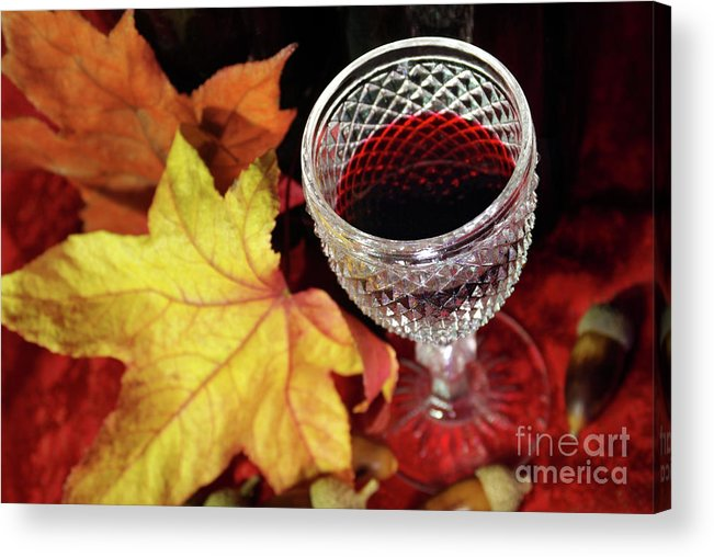 Acorn Acrylic Print featuring the photograph Fall Red Wine by Carlos Caetano