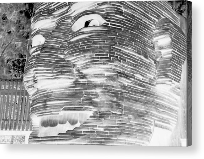 Architecture Acrylic Print featuring the photograph Gentle Giant In Negative Black And White by Rob Hans