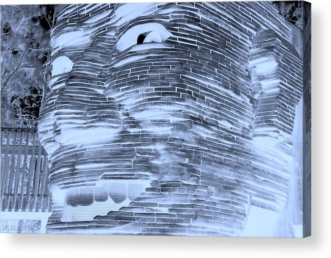 Architecture Acrylic Print featuring the photograph Gentle Giant In Negative Cyan by Rob Hans