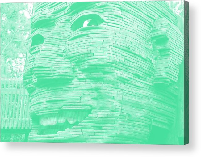 Architecture Acrylic Print featuring the photograph Gentle Giant In Negative Green by Rob Hans