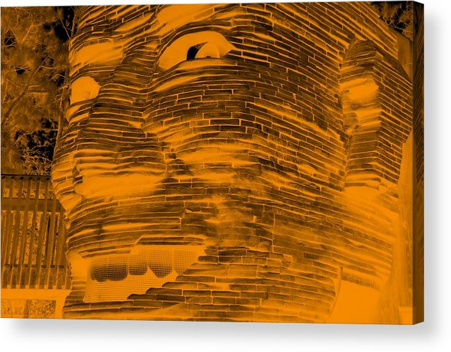 Architecture Acrylic Print featuring the photograph Gentle Giant In Negative Orange by Rob Hans