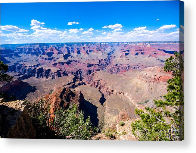 Grand Canyon Acrylic Print featuring the photograph Grand Canyon South Rim by David Waldo
